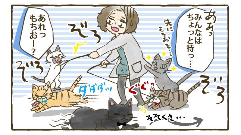 たくさんの猫たちに取り囲まれてあたふたするママを尻目にそそくさとどこかへ去っていくもちお